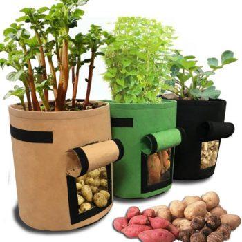Plant Grow Bags 3 Size Home Garden Potato Pot Greenhouse Vegetable Growing Bags Vertical Garden Bag Seedling Bonsai Container